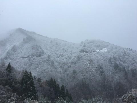 初雪と鰤起こしの雷